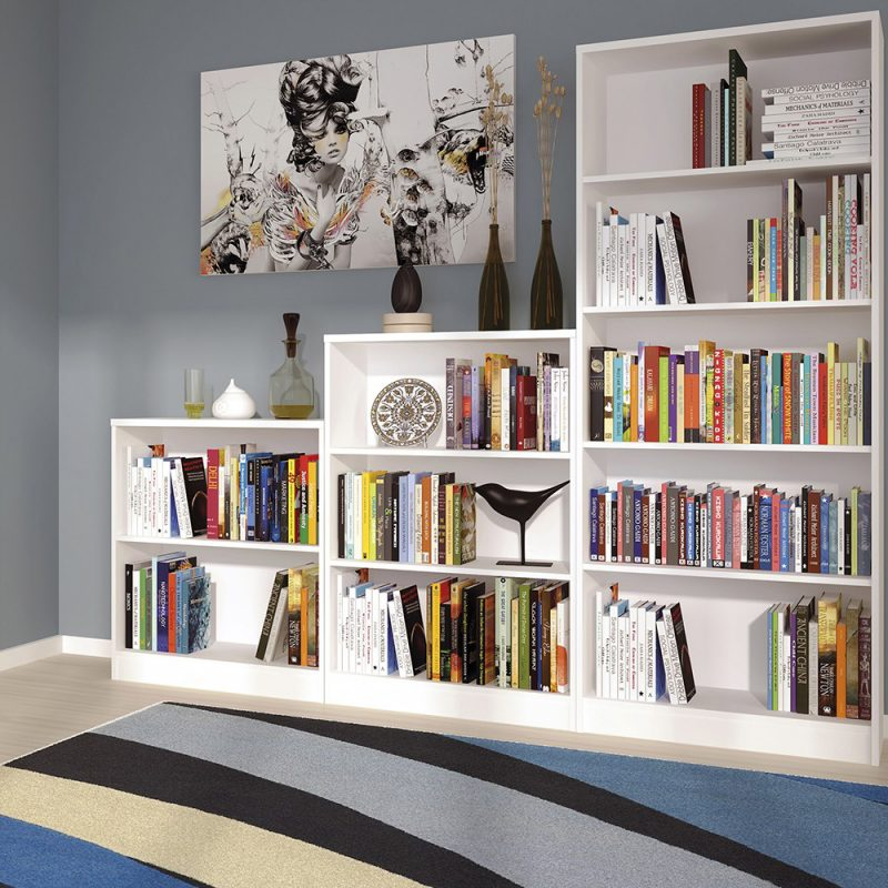 Aster Tall Wide Bookcase 2