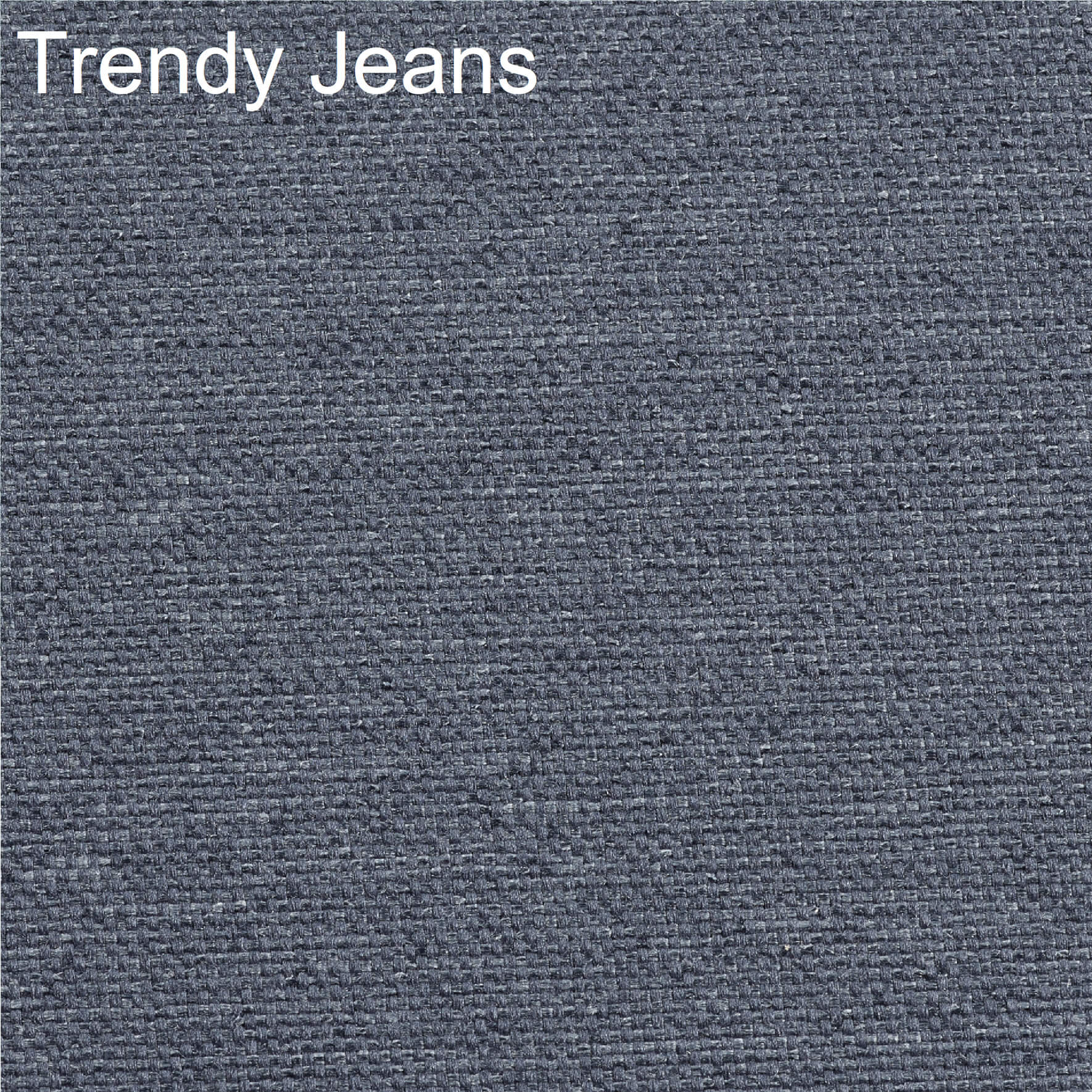 Trendy-Jeans-Myers-Fabric-Swatch-Natural-Collection