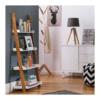 scan ladder bookcase