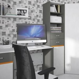 Space-tall-narrow-bookcase-room-setting