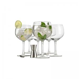 Gin Glass gift set